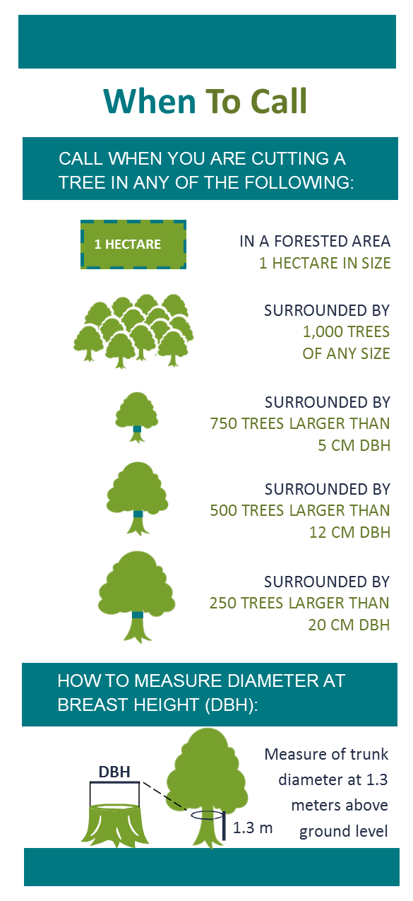 infographic detailing when to call when cutting a tree. full details in brochure