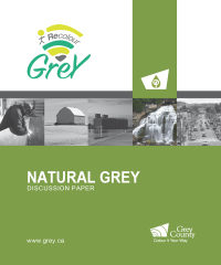 Natural Grey discussion paper colour.