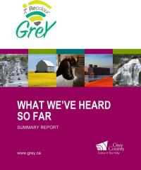 Cover of the What we've Heard summary of Recolour Grey