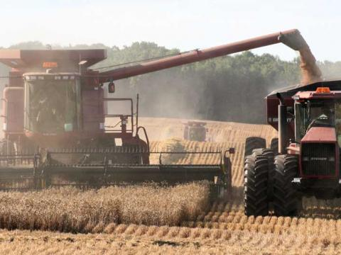A combine harvests a field of wheat and transfers it into a grain wagon being pulled by a tractor.